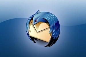 Moz bird