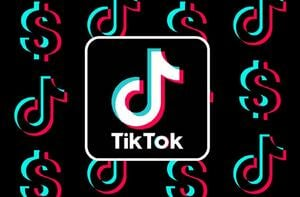 TikTok-Jan-21-2021-10-59-34-41-AM