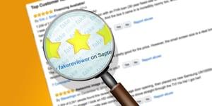 fake review