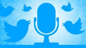 twit speak