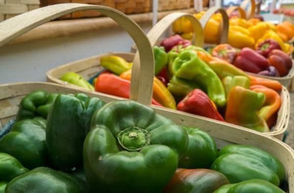 Mail.ru Group инвестировала в платформу доставки натуральных продуктов Foodza