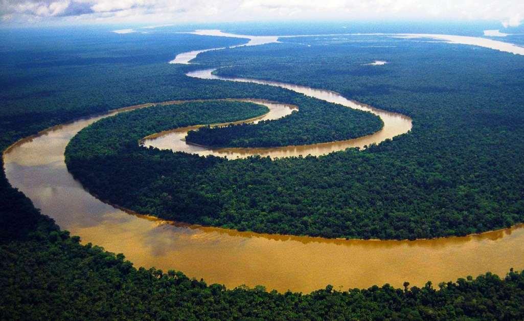 Страны Амазонии недовольны решением ICANN о домене .amazon