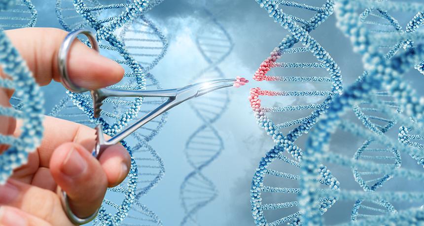 Роспотребнадзор предложил приравнять генетические данные к персональным