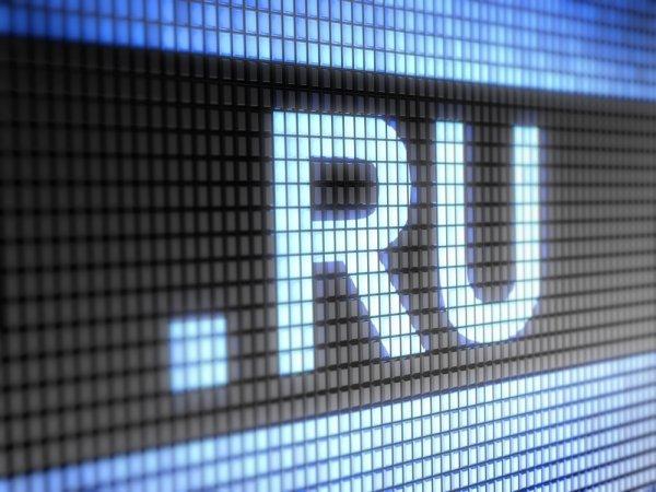 Для администраторов доменов в РФ может быть введена идентификация через ЕСИА