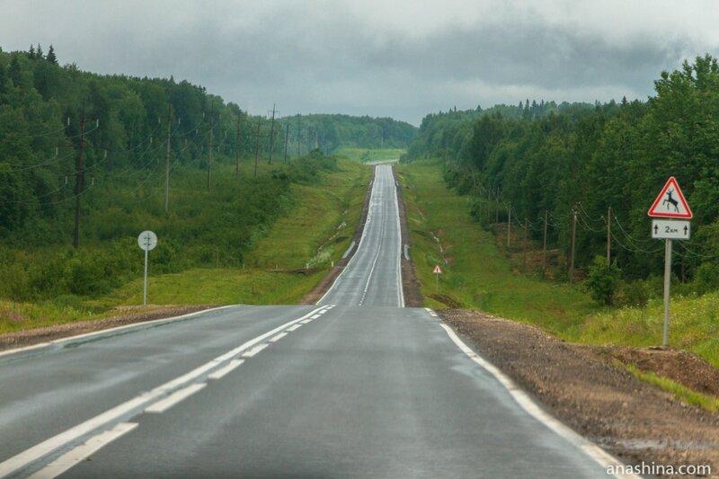 РКН: половина федеральных автотрасс имеют 100%-ное сетевое покрытие