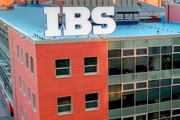 Основатели IBS решили поделить свой бизнес